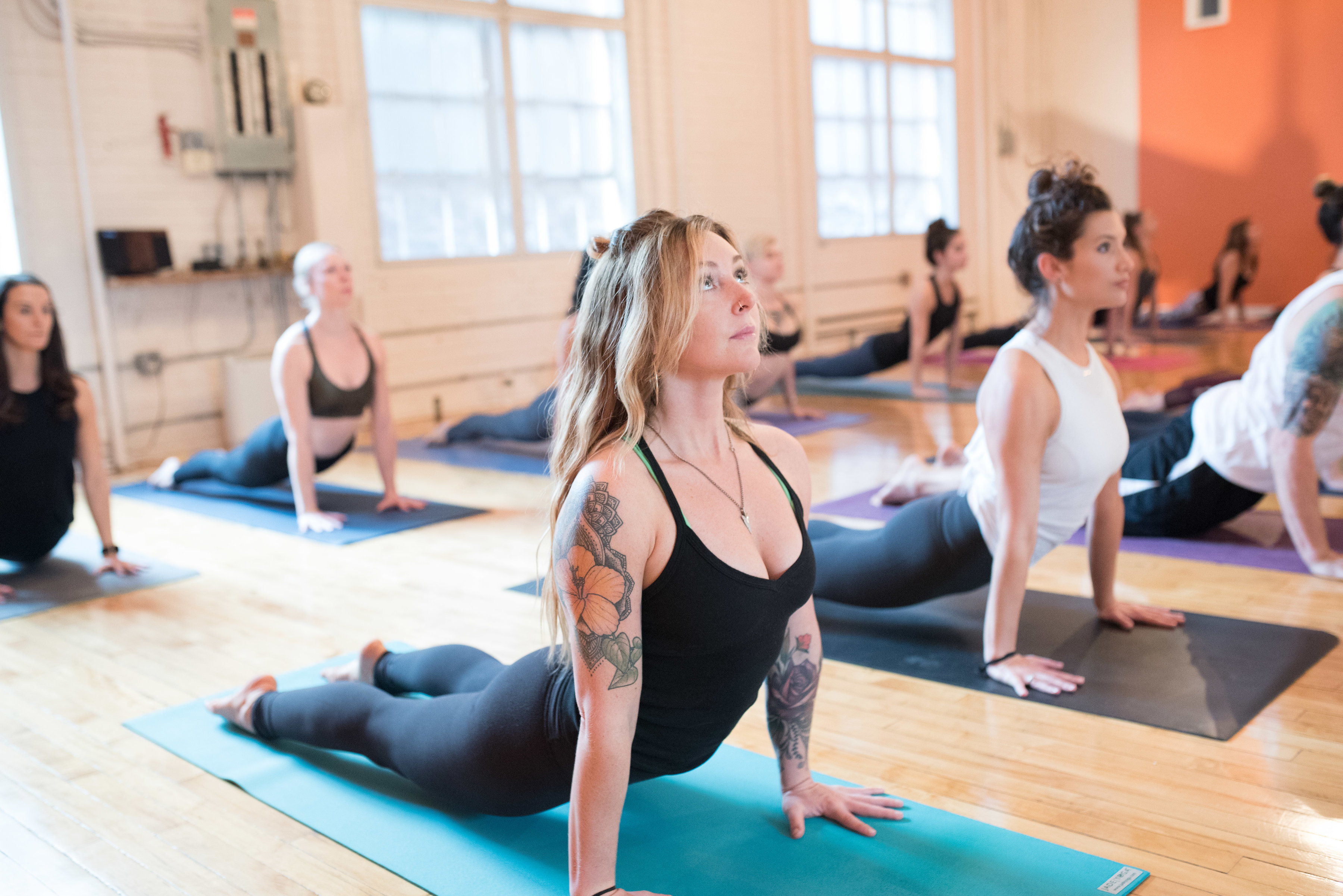 Explore the Numerous Forms of Yoga